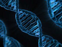 Китайски лекари са създали първите бебета с редактирани гени