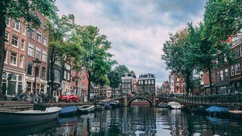 4+1 | Да си купиш къща в Амстердам, как Интернетът на нещата може да диагностицира диабет и още