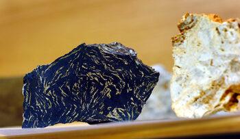 Канадската Velocity Minerals с опция да придобие още проекти за злато