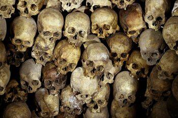 4+1   Как модерните навици променят скелетите ни, Норман Борлауг - мъжът, който нахрани милиони, и още