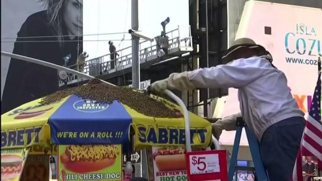 """Нюйоркският площад """"Таймс Скуеър"""" стана обект на необичайно """"нападение"""", след като десетки хиляди пчели накацаха чадър на будка за хотдог, предадоха световните агенции. Вероятната причина е, че пчелите, които преди това са обитавали покрива на близка сграда, са търсили ново място за живеене. Служител отстрани пчелите с подобен на прахосмукачка уред, което отне около 45 минути."""