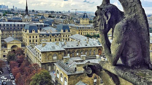 Общо 387 стъпала водят до върха на кулите и превеждат посетителите през галерия с митични същества, обикновено групирани по няколко. Най-известното от тях е гаргойл с обхванали главата му ръце, който се взира в Париж